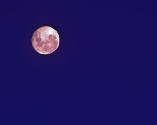 The Full Moon as it appeared rising over the horizon on May 7, 2012.