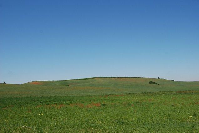 A farm grows in Oregon!