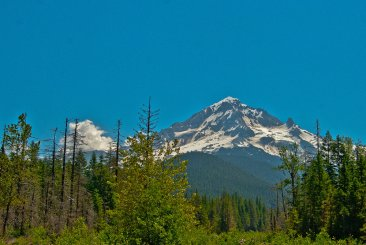 Mt. Hood from Sandy River