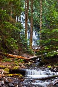 Ramona Falls II
