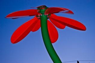 Vince Ferguson - Steel Flower, Photograph