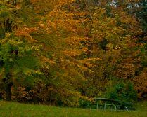 Vince Ferguson - Autumn Picnic - Digital Image
