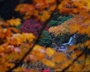 Vince Ferguson - Autumn Waterfall - Digital Image
