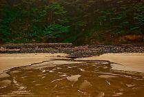 Vince Ferguson, Kerwin Creek - Digital Image