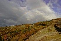 Vince Ferguson - Catherine Creek Rainbow - Digital Image