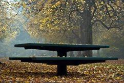 Vince Ferguson - Fall Picnic - Digital Image