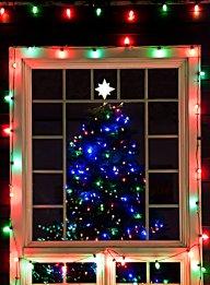 Vince Ferguson - Christmas Tree Window - Digital Image