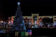 Vince Ferguson - Jamison Square Christmas Tree - Digital Image