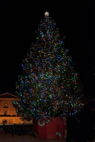 Vince Ferguson - Pioneer Square Christmas Tree - Digital Image