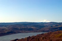 Vince Ferguson - Mount Hood and Mosier, Oregon - Digital Image