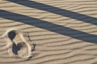 Vince Ferguson - Sand and Shadow - Digital Image