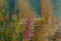 Vince Ferguson - Abstract Water - Digital Image