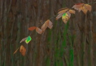 Vince Ferguson - Autumn Leaves - Digital Image