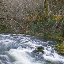 Vince Ferguson - Wilson River - Digital Image