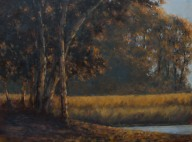 "Burman, Sandee - Backlit Trees, Oil on Board, 18"" x 22"" framed"